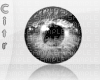 $ Silver eyes