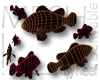 Clown Fish MESH
