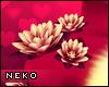 [HIME] Romance Lotus R