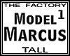 TF Model Marcus1 Tall