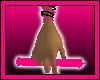 RaverGlowStick: HotPnk