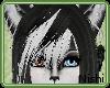 [Nish] Fallen Bangs
