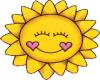 HW: SunShine