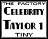 TF Taylor Avatar 1 Tiny