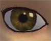 Shiny Eye [BROWN]