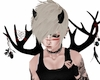 || Sprouting Antlers