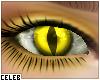 !© Nightwalker Eyes