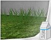 e Grass