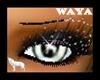 waya!WolfEyesNAFemale