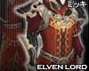 ! Elven Lord Coat