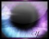 Y~|e| Galaxy