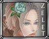 LZ Colette Veil