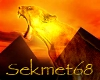 Sekmet Flash Banner