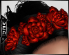 Vn   Laced Roses