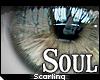 s  Soul Eyes . Bone