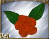VA ~ Orange Floor Roses