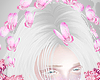 d. butterfly pink