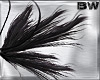 Black Goth Fairy Wings