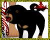 WF>Rottweiler Puppy