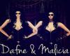 Mali & Daf Club