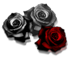 Red /Grey Roses