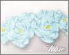 n| Roses Crown Sky