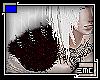 [Spirale M R]