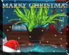 (LR)::Christmas::Plant 5