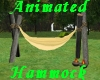 (S)Animated Hammock