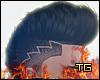 TG x Black Hawk