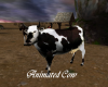Animated Cow