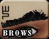 [wsn]Brows#BLACK