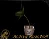 MW Tall Planter Mesh