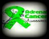 Adrenal Cancer Awareness