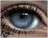 Matt Eyes