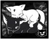 KBs Yin Yang Kitties