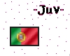 CooL PoRtUgaL MiNi fLag