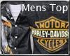 *LMB* Harley Eagle Top