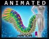 .M. Ani Manda Tail DRV