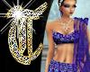 *T* Amethyst Royal Sari