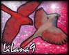 *LL* Birds enhancer 4
