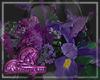 Purple flowers Left