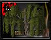~R Large tree2