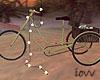 Iv•Vintage Bike