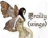 Frailty - wings