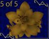 5 Gold Lily Bracelets