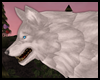 {Sunrise Wolf Pet White}