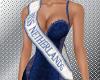 Miss Netherlands sash