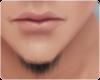 !! Small Beard