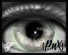 [PnX] Druidic Vision F